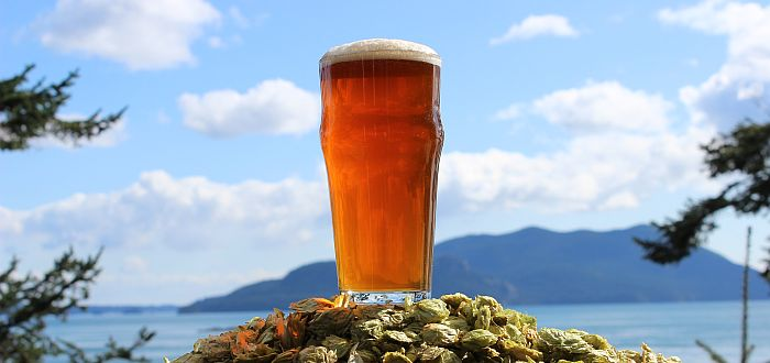 Island Hoppin� Brewery - Beer & View