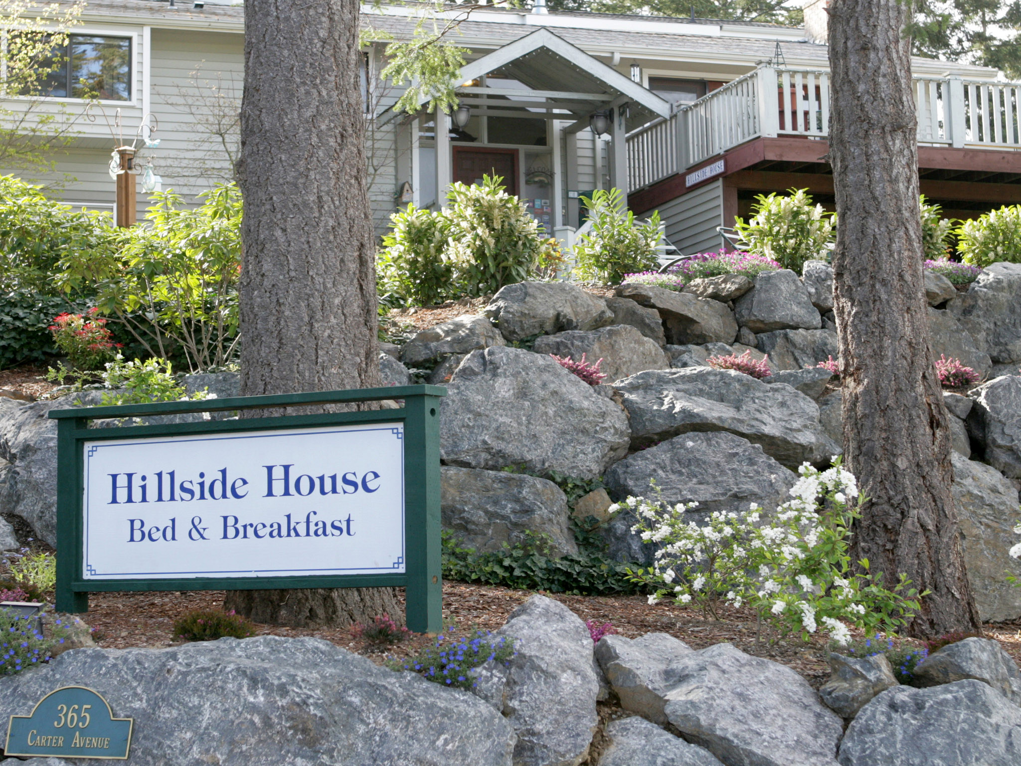 Hillside House Bed & Breakfast - Front