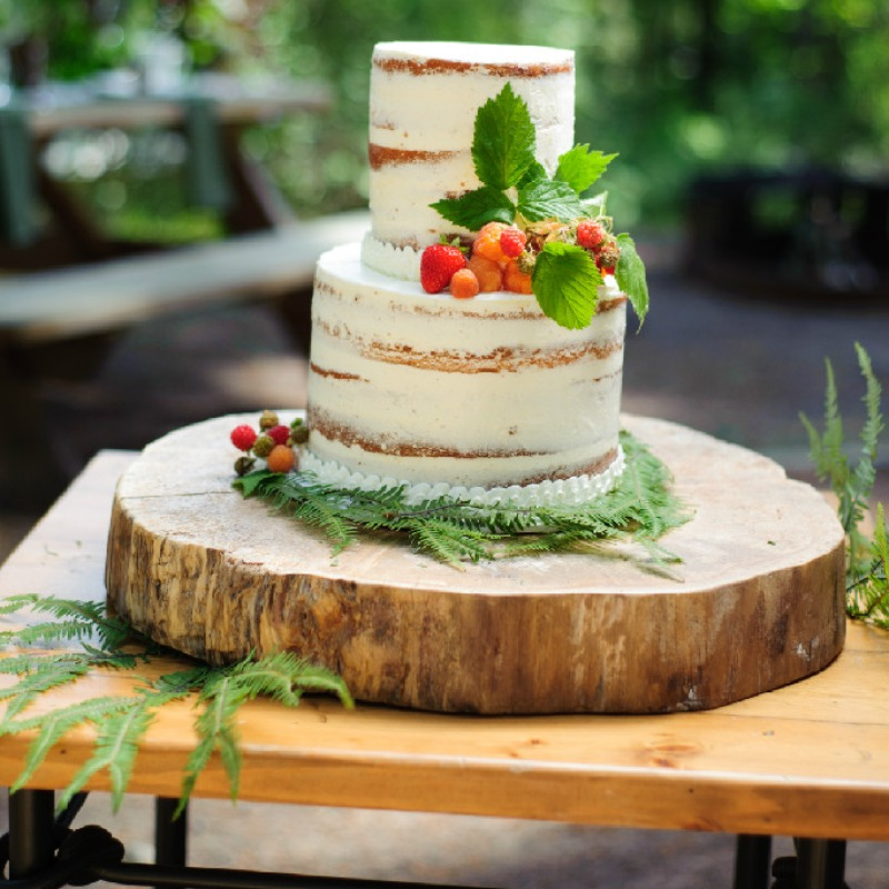 naked cake, rustic wedding
